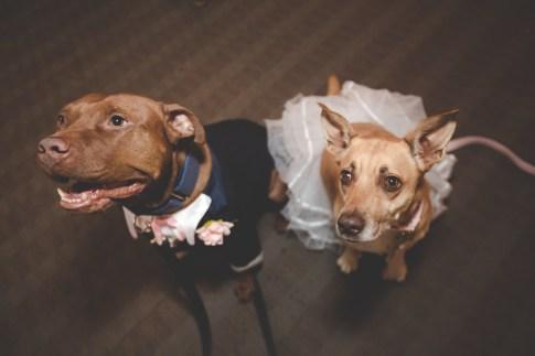 kimmy and kevin wedding-549 gws