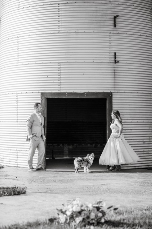 silo with bride and groom and dog