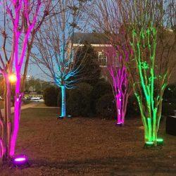 Outdoor Event Lighting