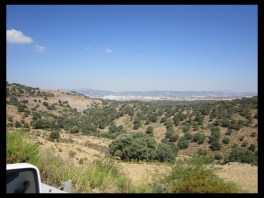 August 15, 2014 - over the mountains to Ronda