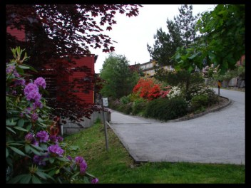 May 2008 - innovation and adaptation, beautiful landscaping