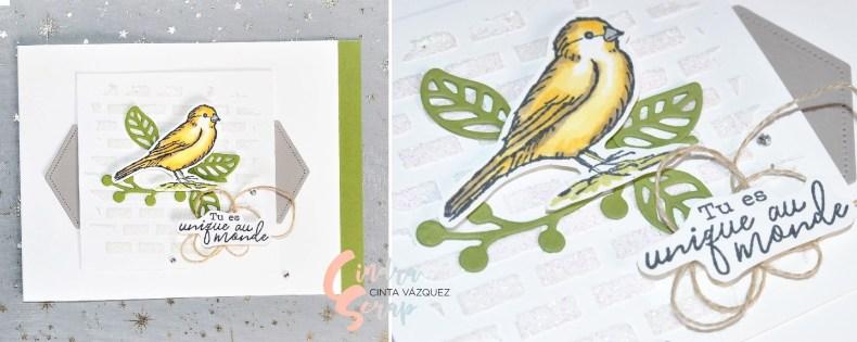 Niche et carte libre comme un oiseau