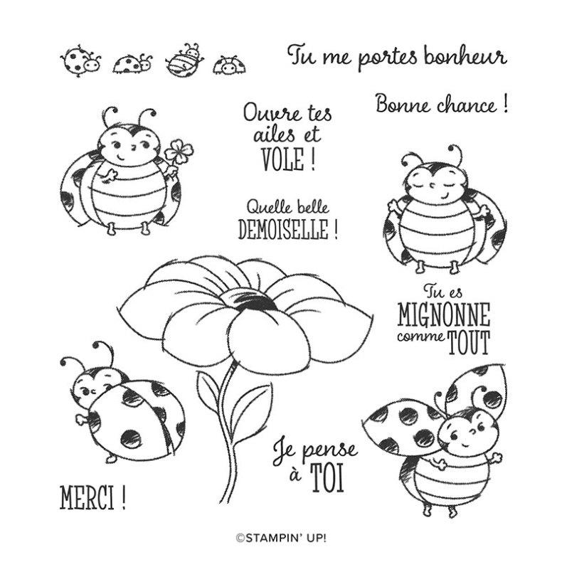 Set Petite coccinelle - fidélité
