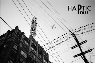 haptic_press