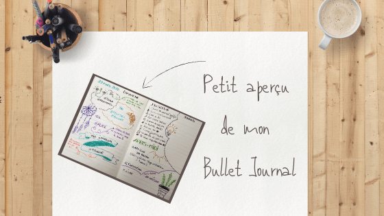 Mon Bullet Journal pour mon Miracle Morning
