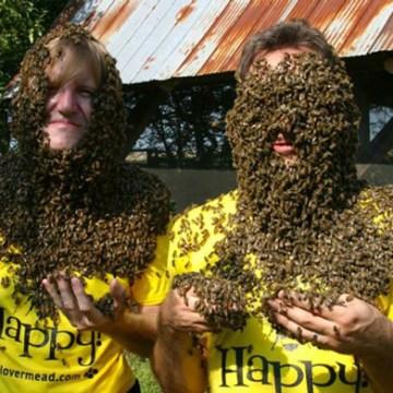 Bee-lieve it!