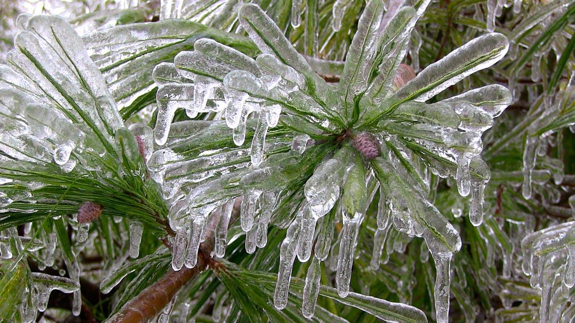 Ontario Ice Storm