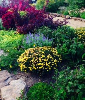 botanical butterfly garden