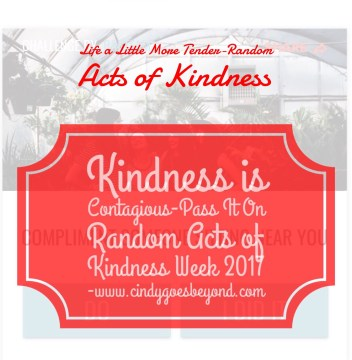 Kindness is Contagious-Pass It On