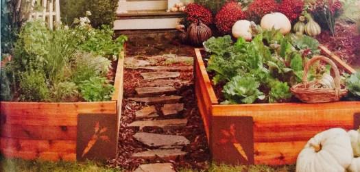 Planning a Raised Bed Garden