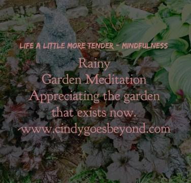 Rainy Garden Meditation