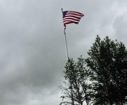 Appreciating Freedoms