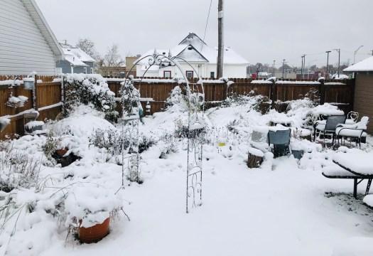 Snow Day Gratitudes