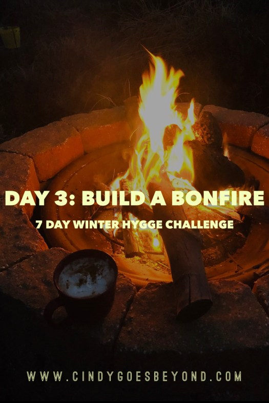 Day 3: Build a Bonfire