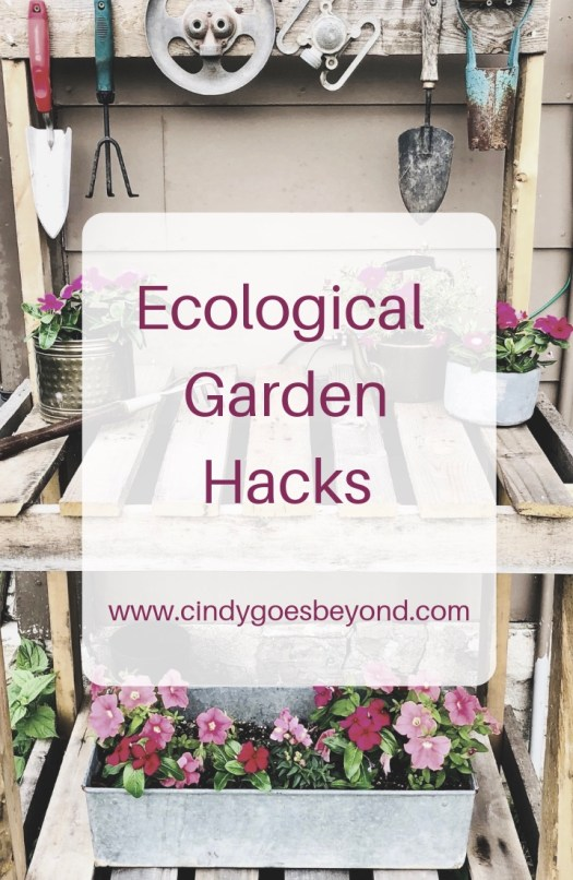 Ecological Garden Hacks