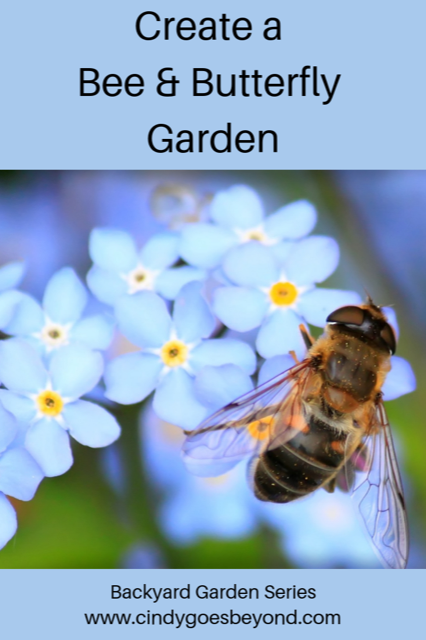 Create a Bee & Butterfly Garden