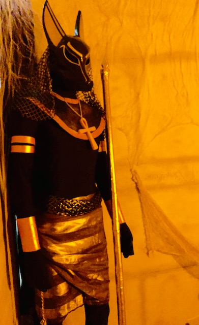 Anubis at the Halloween Party
