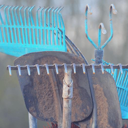 Fall Checklist Clean Tools