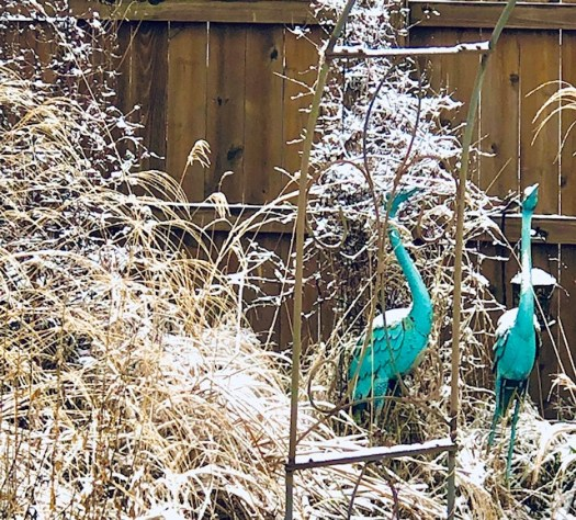 Gardening in Winter Cranes