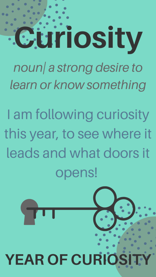 Year of Curiosity definition