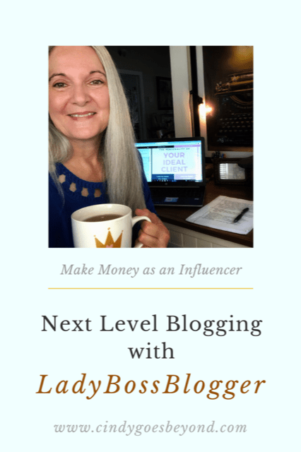 Next Level Blogging with LadyBossBlogger title meme