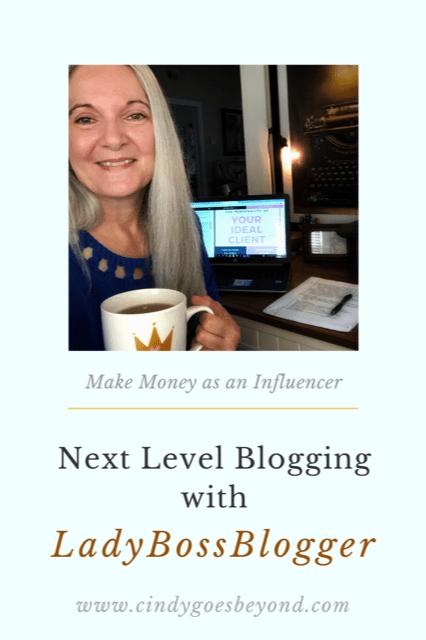 Next Level Blogging with LadyBossBlogger title meme