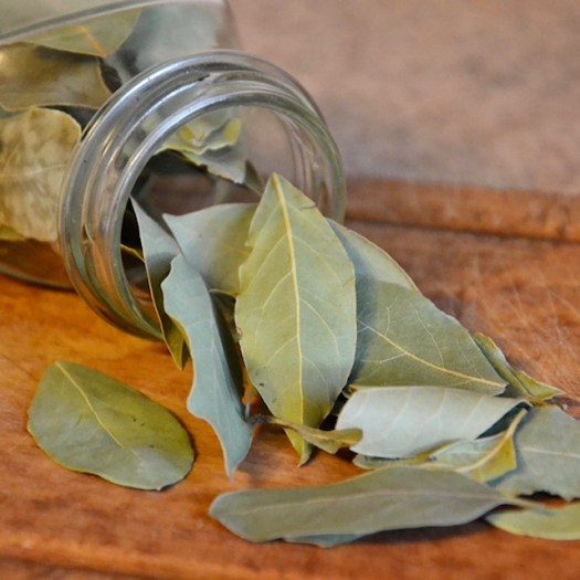 10 Good Luck Traditions from Italy laurel leaves