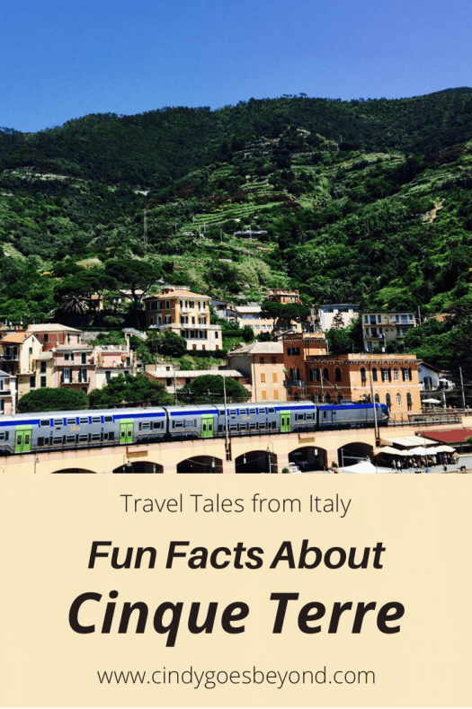 Fun Facts About Cinque Terre title meme