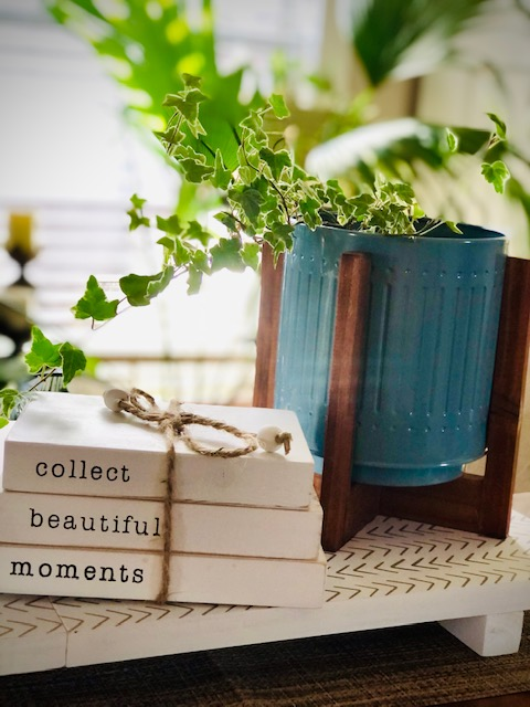 Spring Into Renewal with Decocrated planter