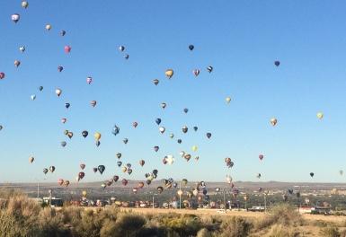 Balloons in the sky at Albuquerque Balloon Fiesta - Cindy Grisdela