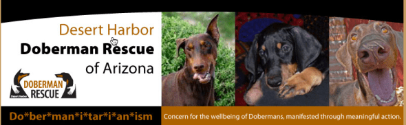 Desert Harbor Doberman Resue