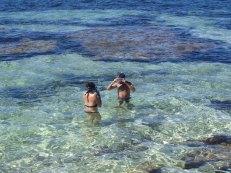 Let's go snorkelling !