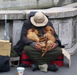 Pets of the Homeless Photo Contest