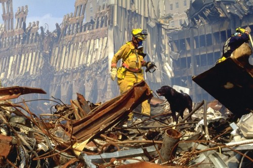 Dog and handler 9/11 Rescue