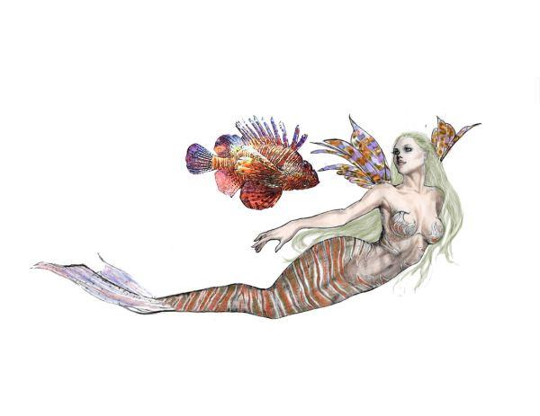 Tiger Fish Mermaid Cindy Mcclure