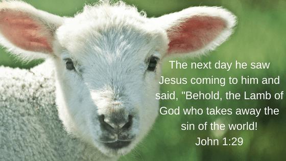 John 1, 29