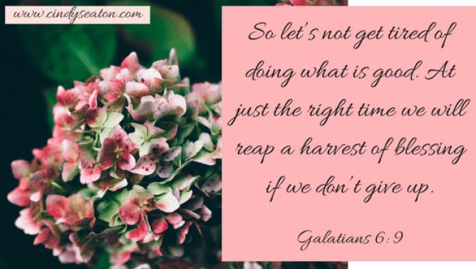 Galatians 6, 9.png