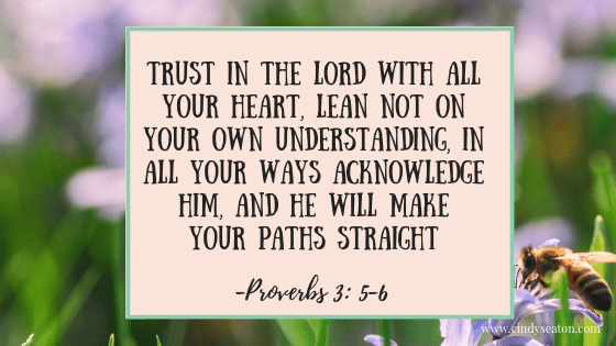 Proverbs 3: 5-6. Bible verse.