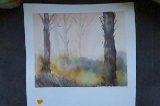 wk4-trees
