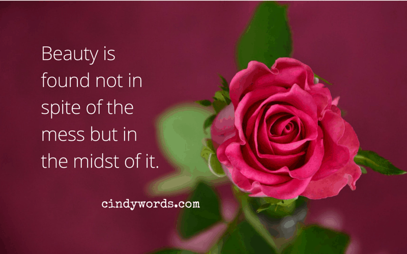 our beauty is found not in spite of the