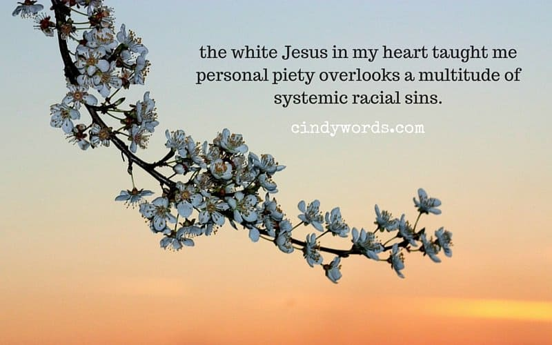 the white Jesus in my heart taught me personal piety overlooks a multitude of systemic racial sins.