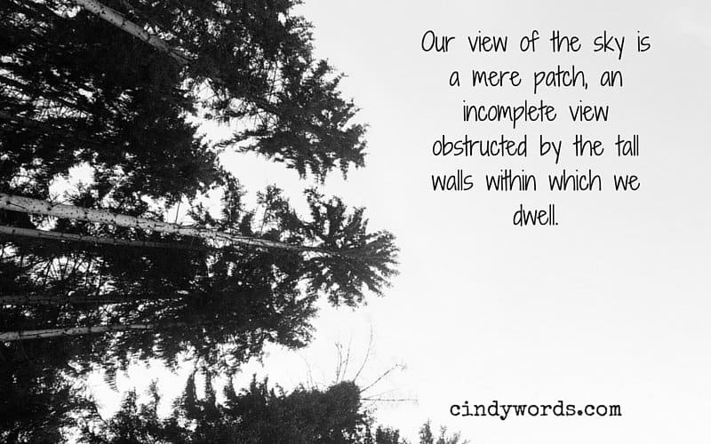 Our view of the sky is a mere patch, an incomplete view obstructed by the tall walls within which we dwell.