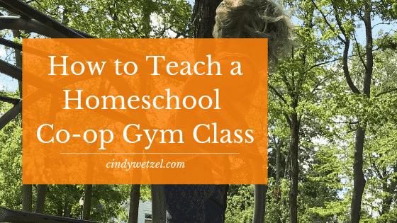 Teach a Homeschool Co-op Gym Class