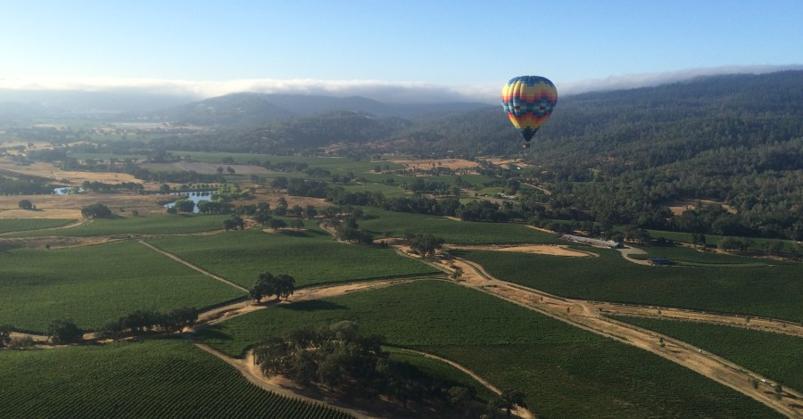 hot air balloons over Napa valley