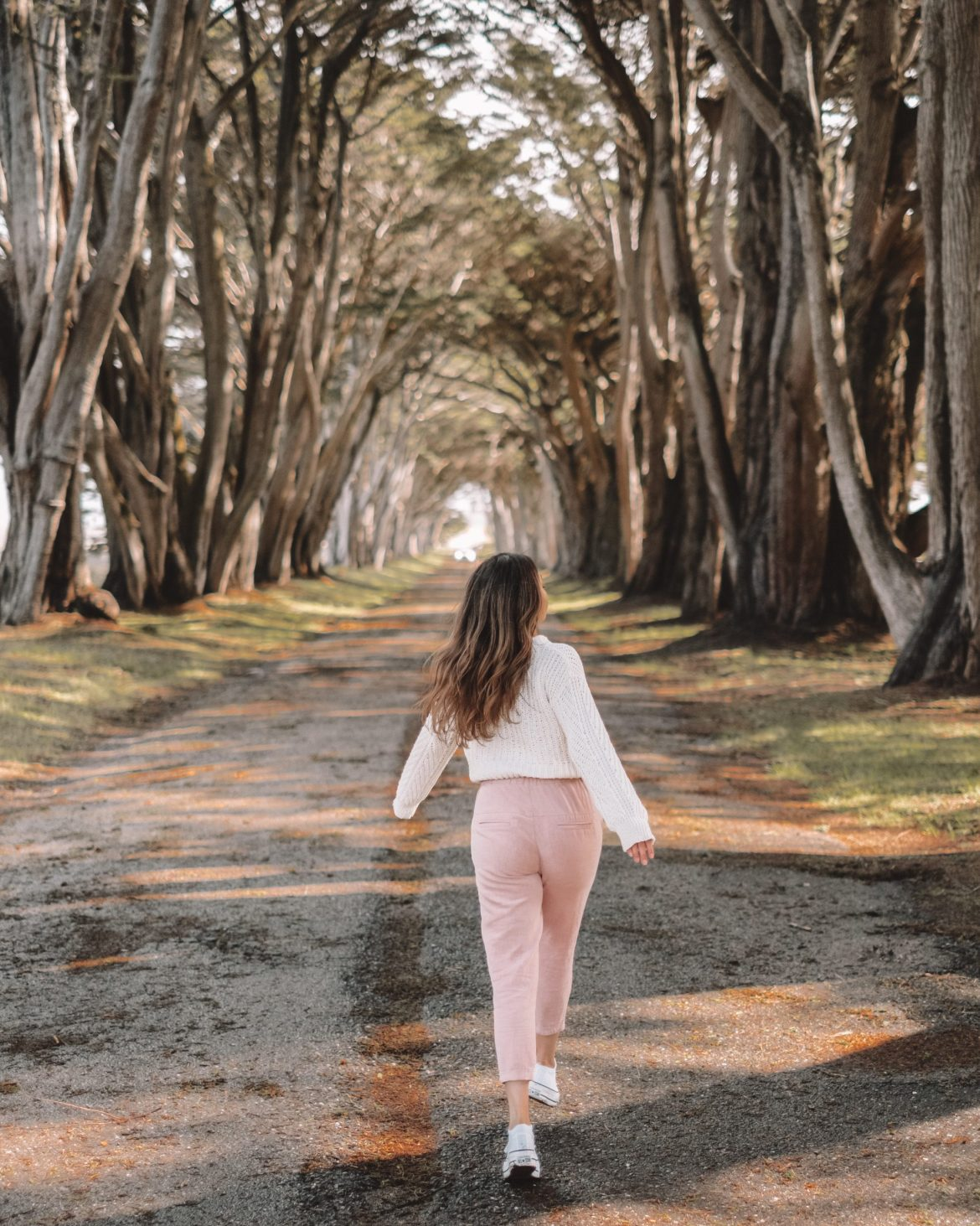 tree tunnel in Point Reyes - 16 places to to visit in California