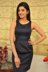Pranitha suhash photoshoot 3