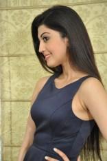 Pranitha suhash photoshoot 4