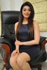 Pranitha suhash photoshoot 9
