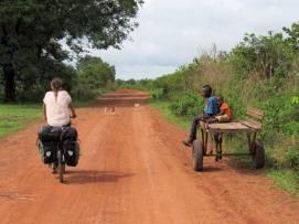 Guinea-Bissau (10)