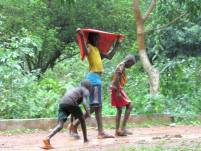 Guinea-Bissau (17)